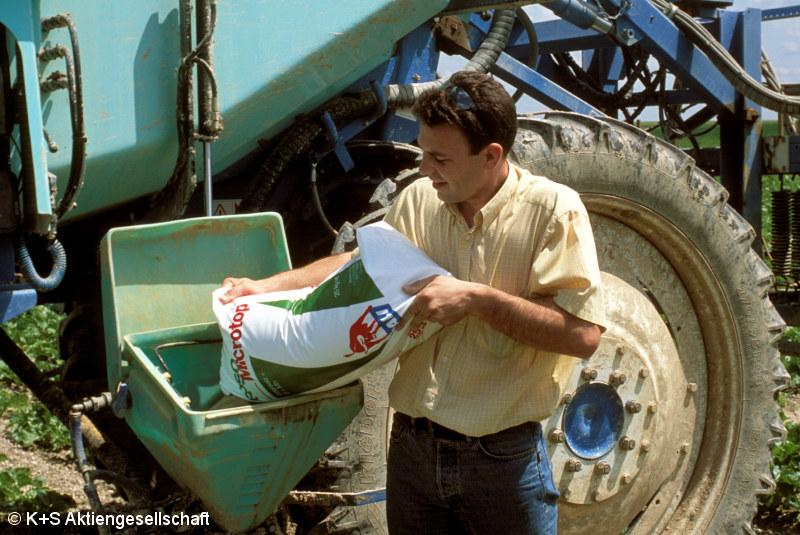 Agrarbranche in der Krise: Auch der Preisverfall bei Getreide belastet K+S (Quelle: K+S AG)