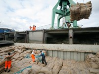 Hafenarbeiter in Hamburg: Vertrauen in den Markt zahlt sich für alle aus