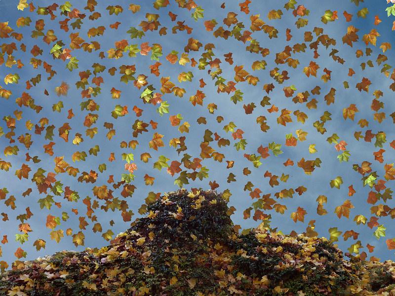 Viele Anleger überdenken im Herbst ihre Anlagestrategie (Fotoquelle: Meinolf Wewel)