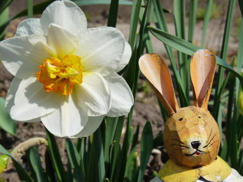 Aktien-Blog wünscht frohe Ostern!